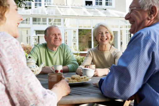 senior socialization village effect
