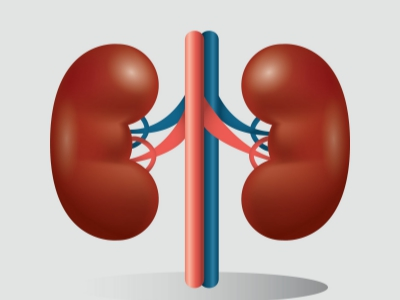 Avoiding Kidney Problems with Vitamin B3